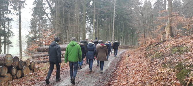Winterwanderung Kapenberg 02.02.2019